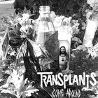 Transplants - Come Around